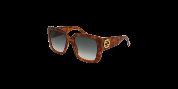 Gucci GG0141S 002 Havana Frame/Green Lens, Size 53mm Sunglasses